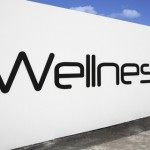 behavior modifications for wellness programs