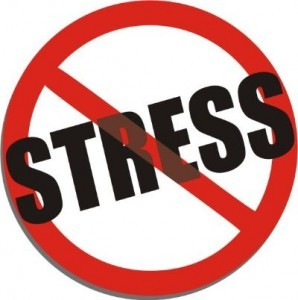 April is Stress Awareness Month. How Will You Celebrate this With Your Employees?